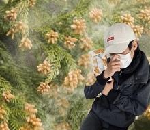 ✿花粉シーズン到来(-_-;)
